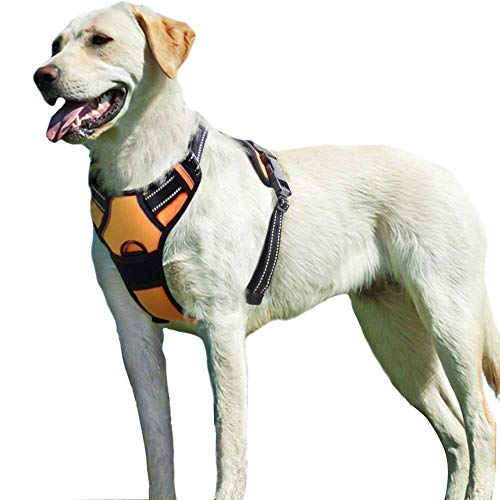 Eagloo Dog Harness No Pull, Walking Pet Harness with 2 Metal Rings and...