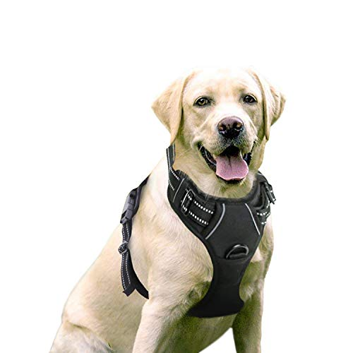rabbitgoo No-Pull Dog Harness Padded Adjustable Pet Vest Harness with...