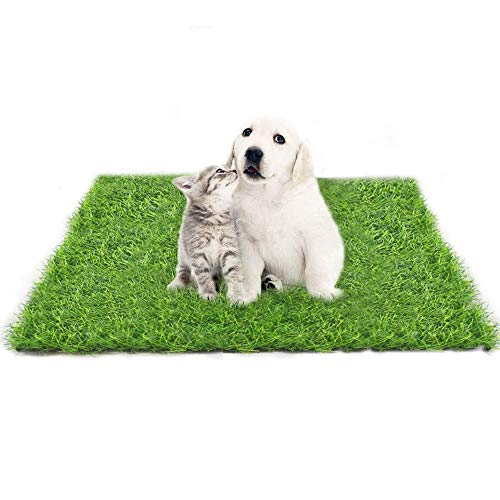 Fortune-star 39.3in X 31.5in Artificial Grass Dog Grass Mat and Grass...