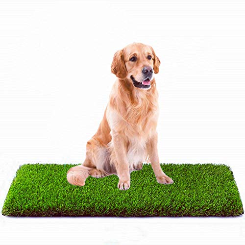 MTBRO Artificial Grass, Professional Dog Grass Mat, Outdoor Potty...