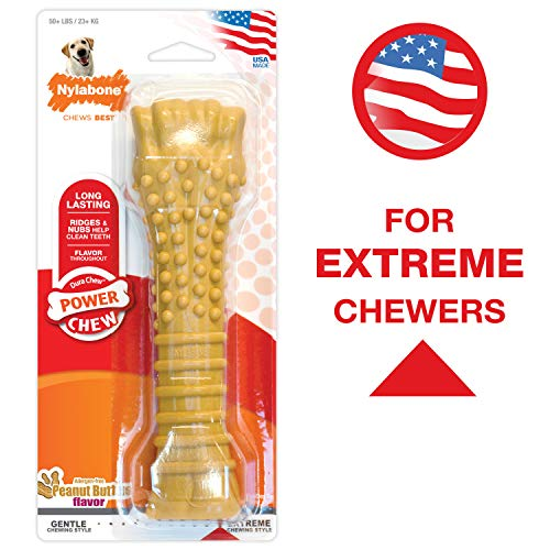 Nylabone Power Chew Flavored Durable Chew Toy for Dogs Peanut Butter...