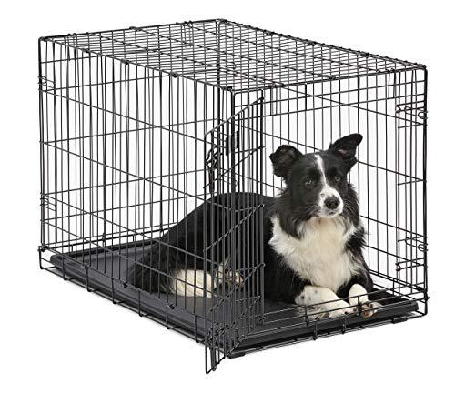 Dog Crate | MidWest ICrate 36 Inch Folding Metal Dog Crate w/ Divider...