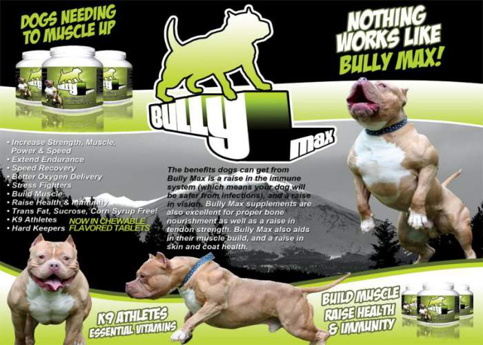 Pitbull bully food goldenacresdogs bully max guide reviews vitamins for your american dogs forumfinder Image collections