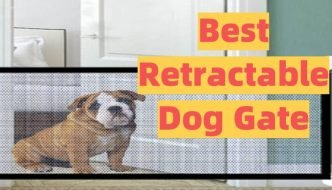Best Retractable Dog Gate