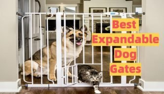 expandable dog gate guide